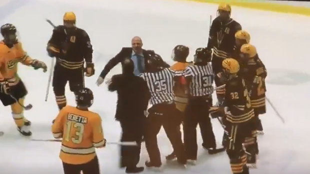 Two College Hockey Coaches Start Swinging At Each Other To Spark Huge Full-team Brawl