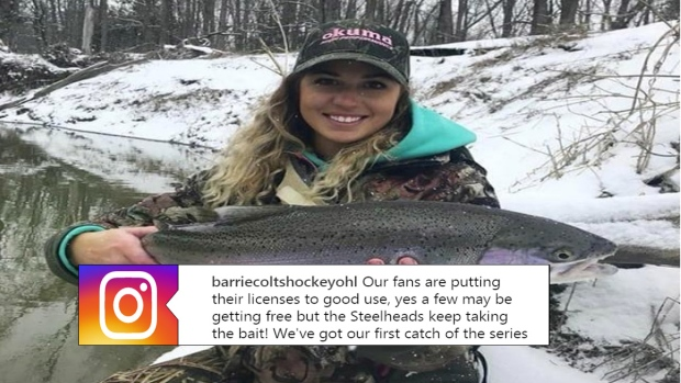 OHL: Barrie Colts Issue Fans Fishing Licenses Ahead Of Their Series With The Mississauga Steelheads