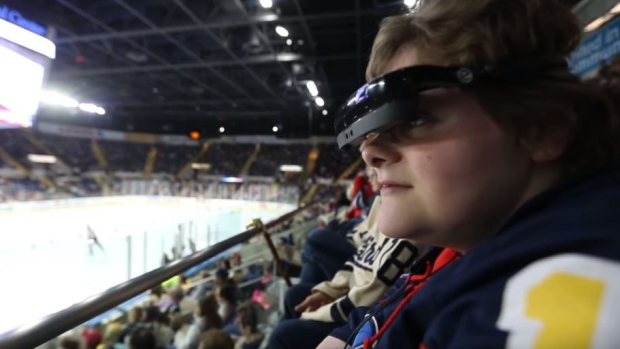 AHL: Springfield Thunderbirds Come Through For Blind Fan To Help Her Watch A Hockey Game