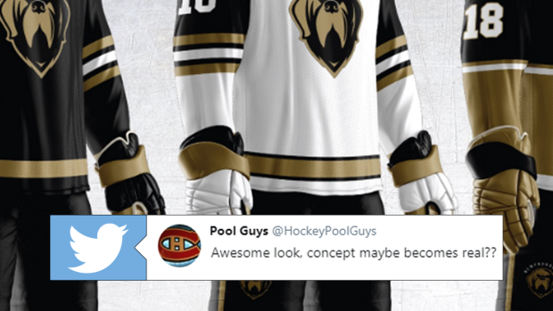 Very cool concept jerseys for Newfoundland Growlers, Leafs ...