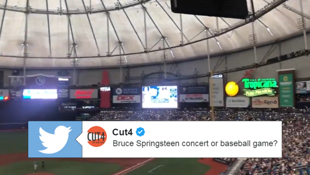 Yankees and Rays fans try to take matter into their own hands during