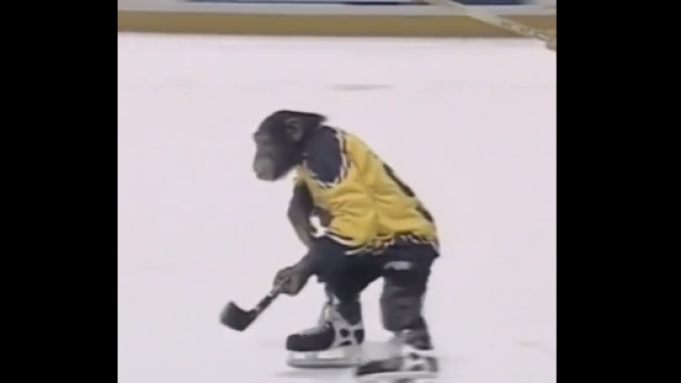 Remembering Jack the Chimpanzee's elite skating stride